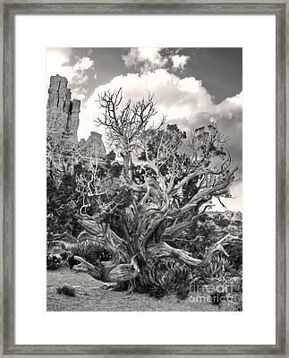 Sedona Arizona Framed Print by Gregory Dyer