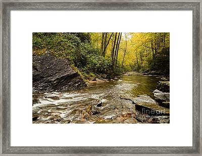 2725 Looking Glass Falls Framed Print by Stephen Parker