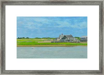 Swimming Turtle Framed Print by John Francis