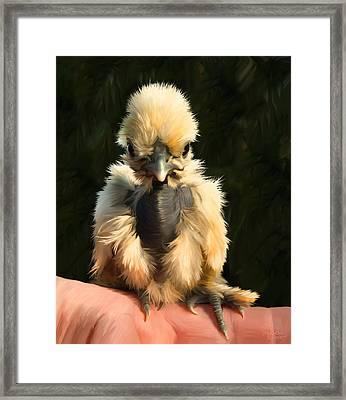 28. Fingerchick Framed Print by Sigrid Van Dort