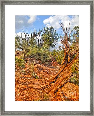 Sedona Arizona Framed Print by Gregory Dyer