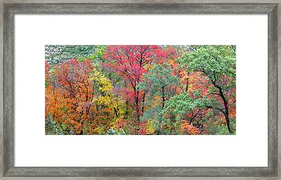 Usa, Texas, Guadalupe Mountains Framed Print