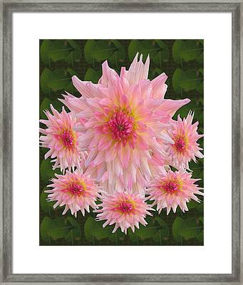 Abstract Flower Floral Photography And Digital Painting Combination Mixed Media By Navinjoshi       Framed Print