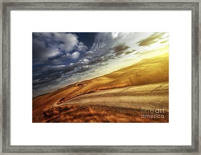 A Country Road In Field At Sunset Framed Print by Evgeny Kuklev