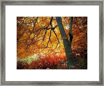 Ablaze Framed Print