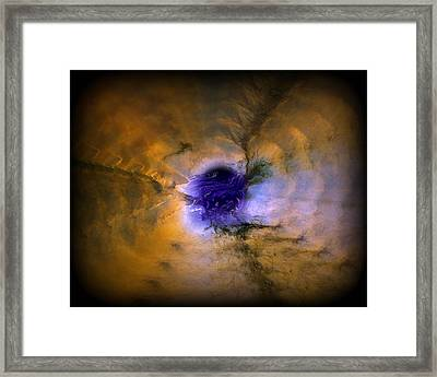 Abstract 82 Framed Print by J D Owen