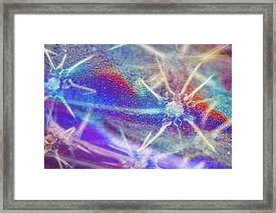 Abstract Polarised Light Micrograph Framed Print