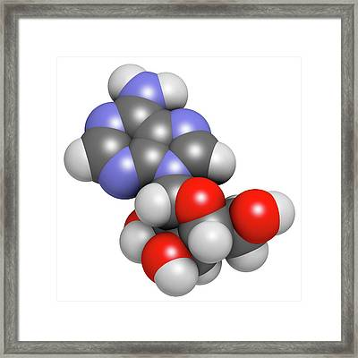 Adenosine Purine Nucleoside Molecule Framed Print
