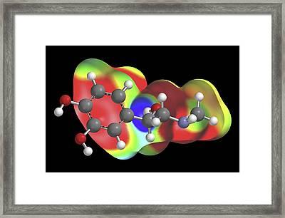 Adrenaline Molecule Framed Print
