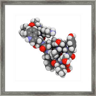 Afamelanotide Drug Molecule Framed Print