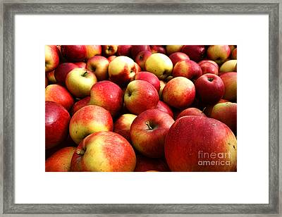 Apples Framed Print by Olivier Le Queinec