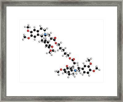 Atracurium Skeletal Muscle Relaxant Drug Framed Print by Molekuul