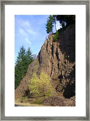 Autumn 6 Framed Print by J D Owen