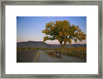 Autumn Moonset Framed Print by Jim Snyder