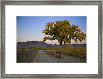 Autumn Moonset Framed Print