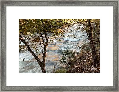Autumn Morning Framed Print by Iris Greenwell