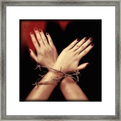 Barbed Wire Framed Print by Joana Kruse