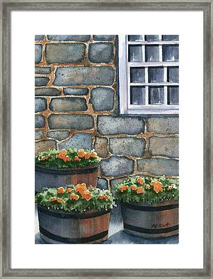 3 Barrels Framed Print by Marsha Elliott
