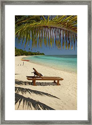 Beach, Palm Trees And Lounger Framed Print by David Wall