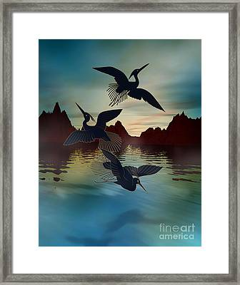 3 Black Herons At Sunset Framed Print
