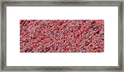 Blood Clot Framed Print