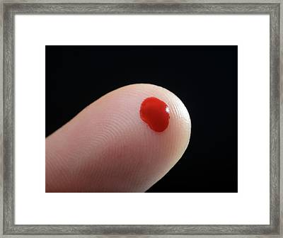 Blood Droplet On Finger Framed Print by Cordelia Molloy