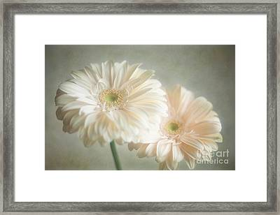 Framed Print featuring the photograph Blooming by Aiolos Greek Collections