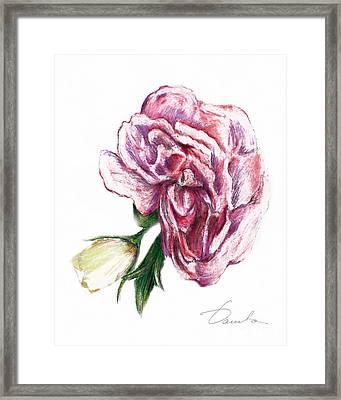 Blossom Framed Print by Danuta Bennett