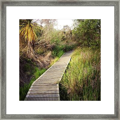 Boardwalk  Framed Print by Les Cunliffe