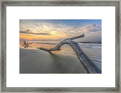 Bough In Ocean Framed Print by Peter Lakomy