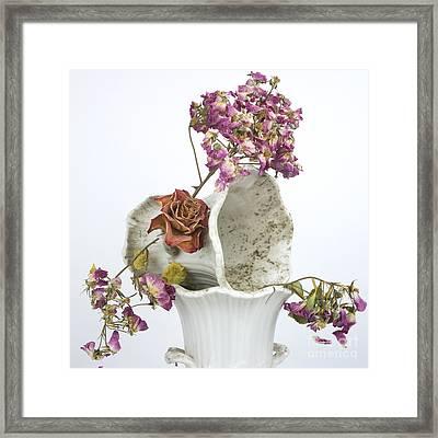 Bouquet Framed Print by Bernard Jaubert