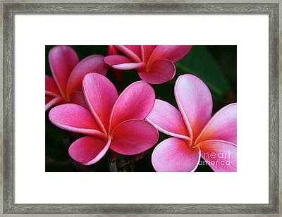 Breathe Gently Framed Print