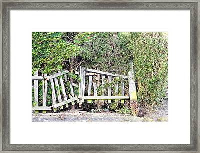 Broken Fence Framed Print by Tom Gowanlock