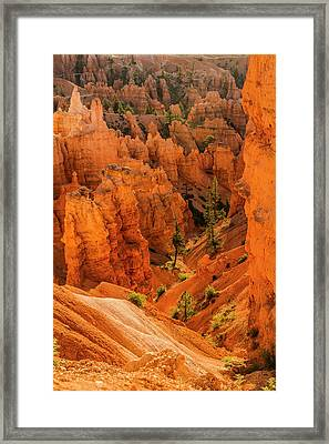 Bryce Canyon National Park, Utah Framed Print
