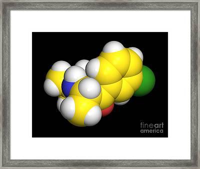 Bupropion Drug Molecule Framed Print by Dr. Tim Evans