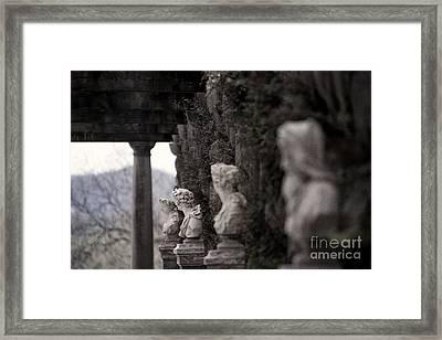 Busts Framed Print by Doug Sturgess