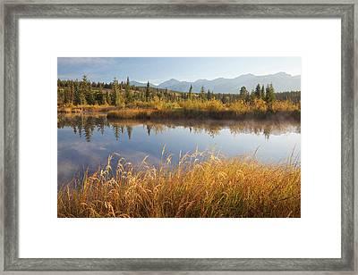 Canada, Alberta, Jasper National Park Framed Print