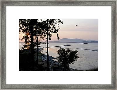 Canada, British Columbia, Sidney Island Framed Print by Kevin Oke