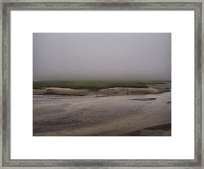 Cape Cod Marsh Framed Print