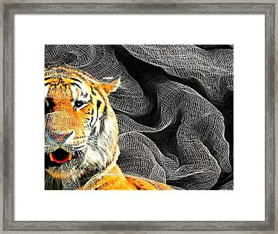 Capture Framed Print by Diana Angstadt