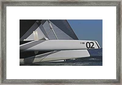 Cat On The Bay Framed Print by Steven Lapkin