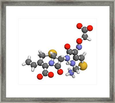 Cefixime Antibiotic Drug Molecule Framed Print