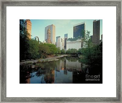 Central Park Framed Print by Rafael Macia