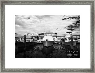 Charter Fishing Boats Charter Boat Row City Marina Key West Florida Usa Framed Print by Joe Fox