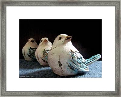 3 Cheeky Chicks 2 Framed Print by Danielle  Parent