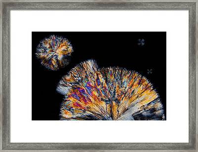 Cholesterol Crystals Framed Print by Antonio Romero