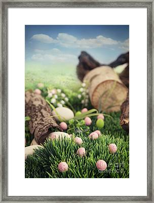 Colorful Easter  Framed Print by Mythja  Photography