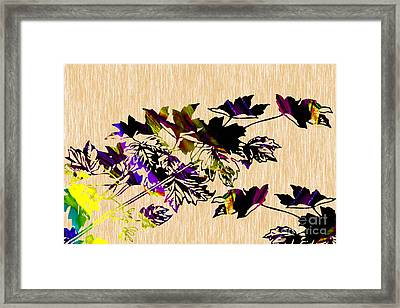 Colorful Leaves Framed Print