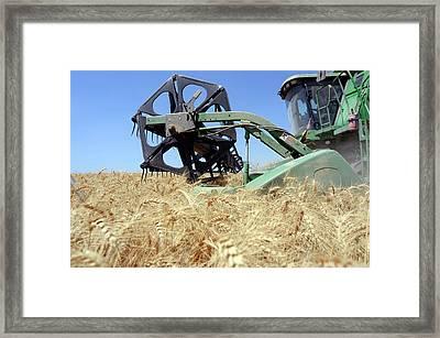 Combine Harvester Framed Print by Photostock-israel