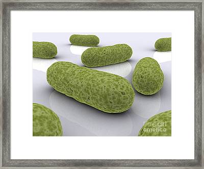 Conceptual Image Of Bacteria Framed Print by Stocktrek Images